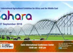 Sahara Expo 2016