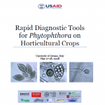 Rapid Diagnostic Tools for Phytophthora on Horticultural Crops